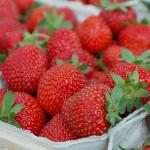 Schmelzflocken-Milchbrei mit Erdbeeren