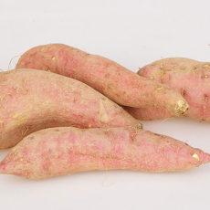 Lachs-Brei mit Süßkartoffeln und Zucchini