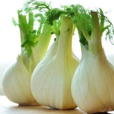 Fenchel-Karotten-Brei