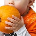 Welches Gemüse für Babybrei