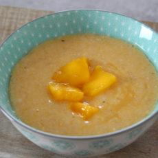 Babybrei Mango Karotte