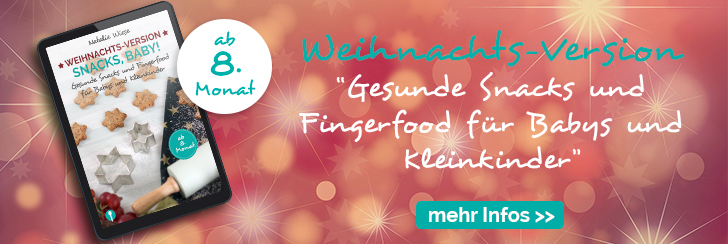 eBook Snacks Baby Weihnachts-Version